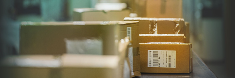DANFE Simplificado – Etiqueta para E-Commerce